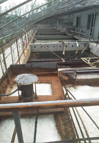 污水处理气浮除渣系统