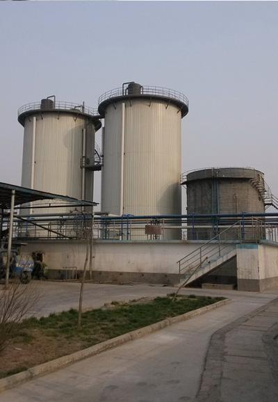 北京淀粉食品加工废水厌氧反应器